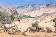DJH-Namibia-20171014-0P0A3830
